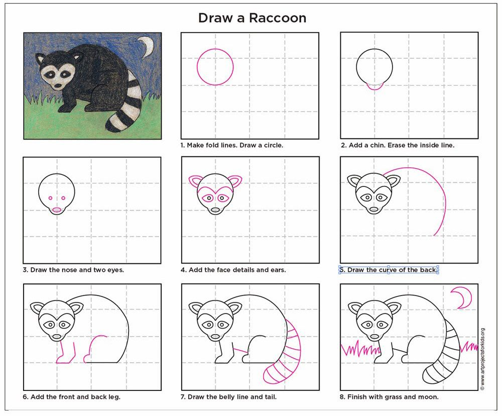how to draw a raccoon f