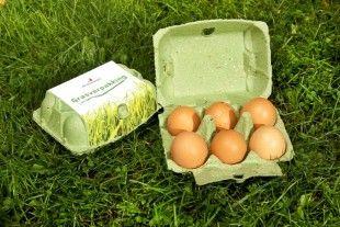 Afbeeldingsresultaat voor eierdoos gras