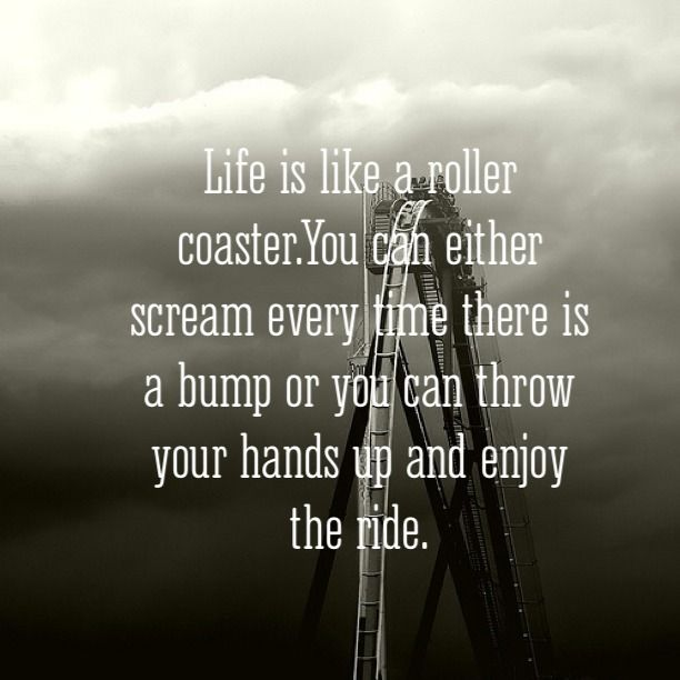 Life is like a roller coaster. You can either scream every time there is a bump or you can throw your hands up and enjoy the ride. thedailyquotes.com