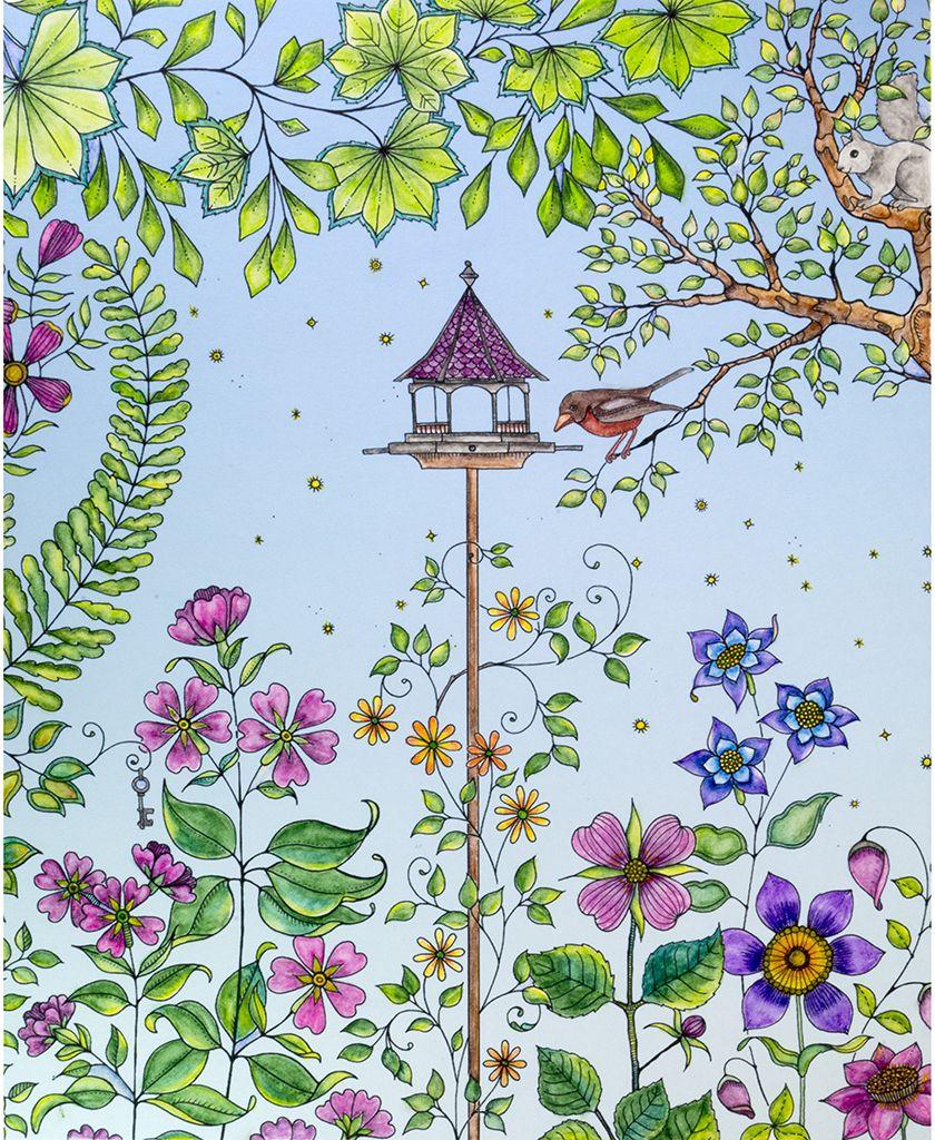 Johanna Basford S Bird House Secret Garden Book Johanna Basford Coloring Basford Coloring