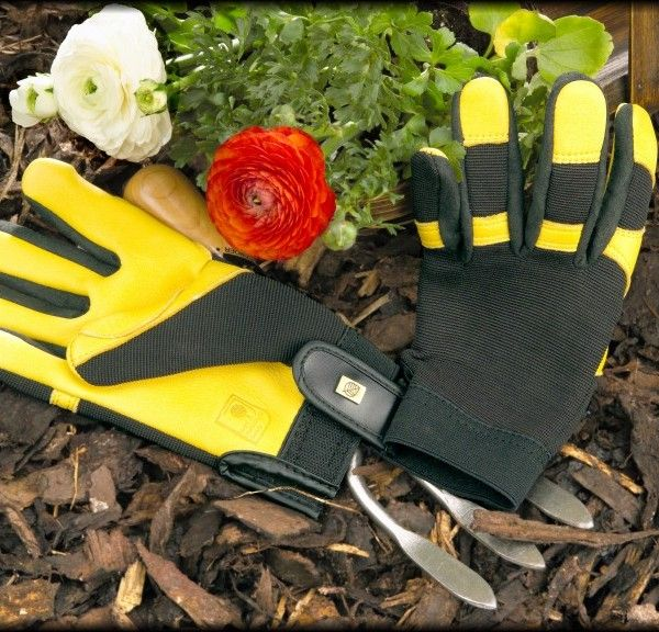 4d483910f54ddb1c77c4de106eb0d0fb - Gold Leaf Gents Winter Touch Gardening Gloves