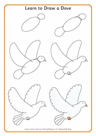 Learn to Draw a Dove
