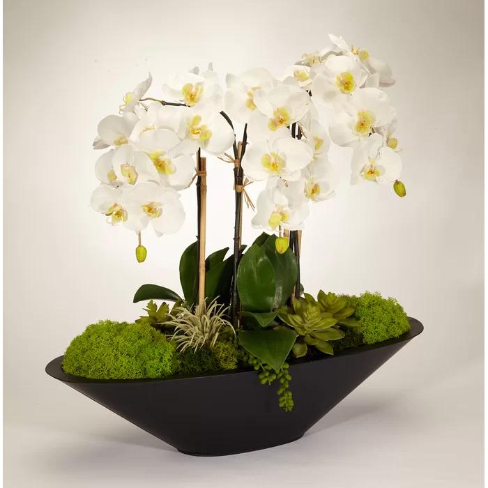 Orchid Floral Arrangement In Metal Pot In 2020 Orchid Flower Arrangements Orchid Arrangements Flower Arrangements Simple