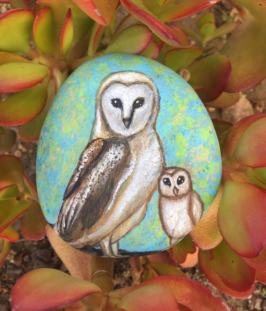Barn Owl Painting On A Painted Rock - Painted Owl Beach Rock Owl baby - C Michel  | eBay