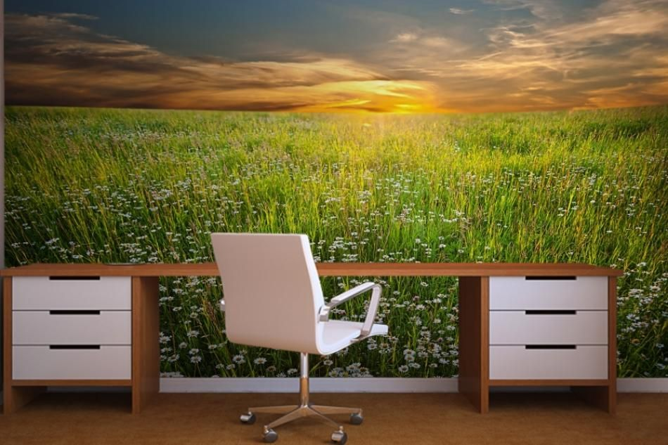 Interior Design, Nature Wall Murals Wallpaper For Home Office Interior:  Beautify The Interior Wall House With Wallpaper Murals