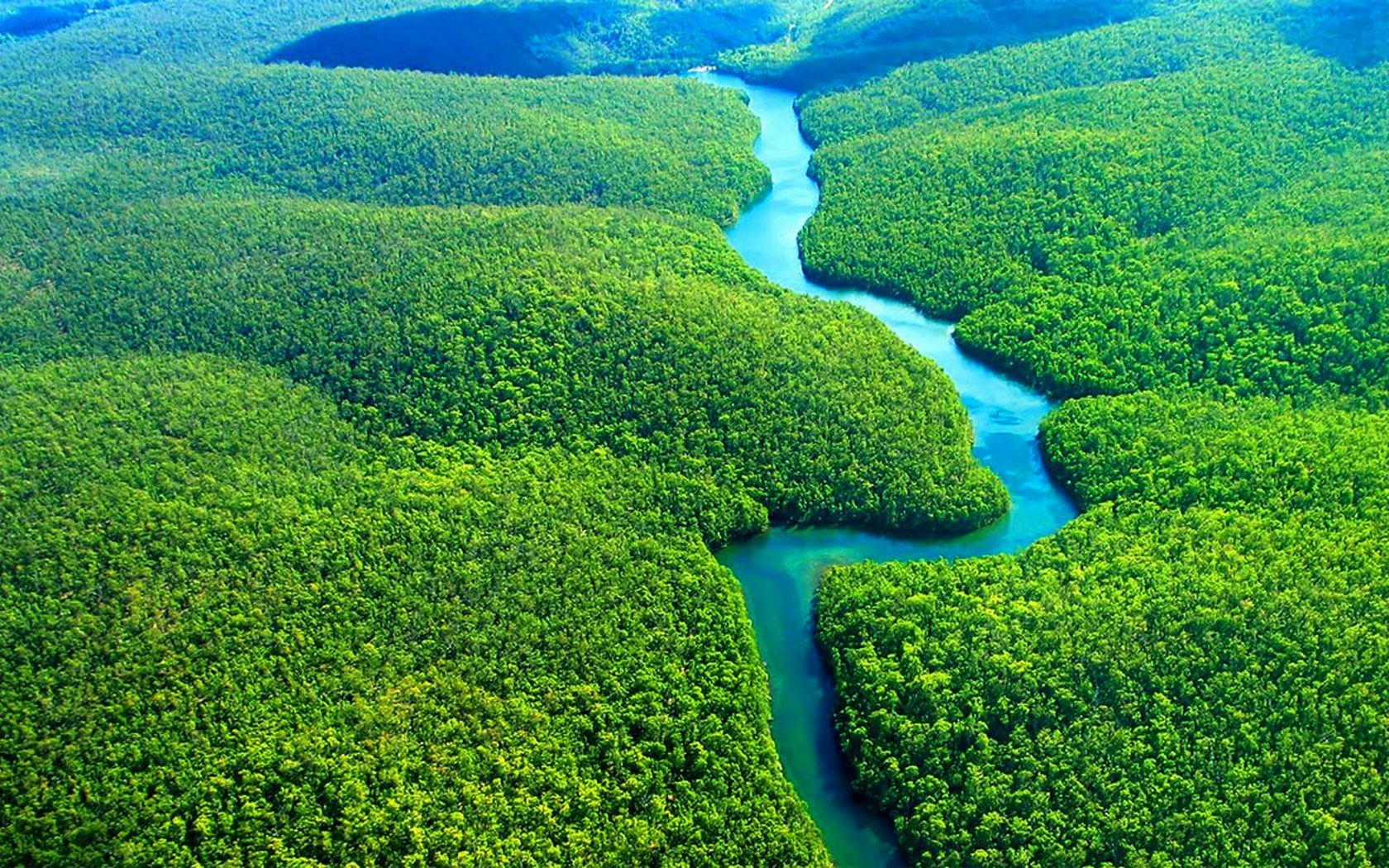 Amazon rainforest wallpaper for desktop and mobile in high for Amazon wallpaper
