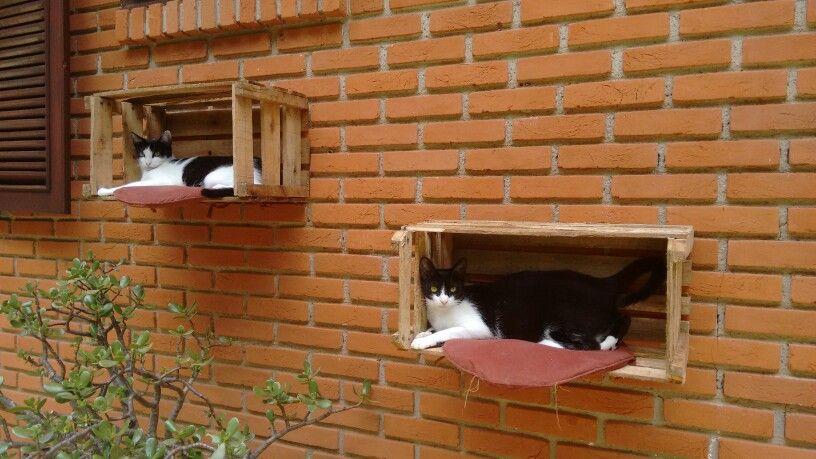 Casa das gatinhas feito com caixas de madeira recicláveis.