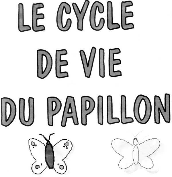 Le Cycle De Vie Du Papillon Activites Pedagogiques