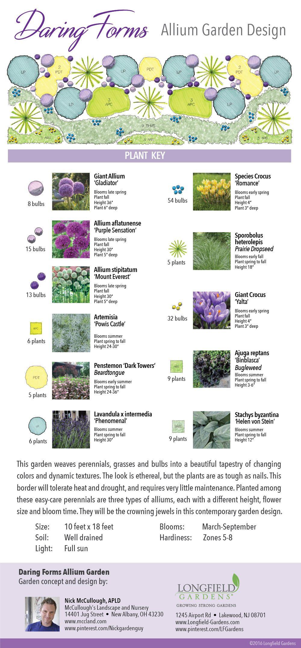 Good Visual Presentation Of Design And Plants Naturalistic Garden Allium Garden Longfield Gardens