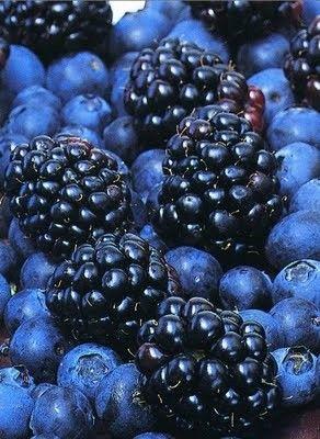 blackberries - blueberries