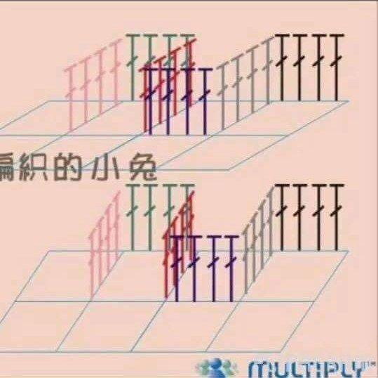 9.jpg 539×538 piksel