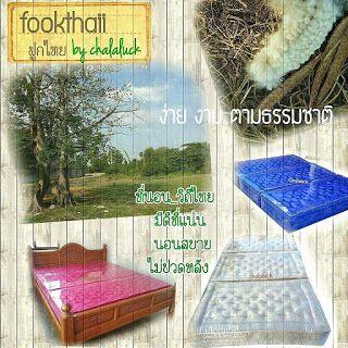 ท นอนว ถ ไทย นอนน นไทยใครว าเชย Kapok Organic Futon Mattres