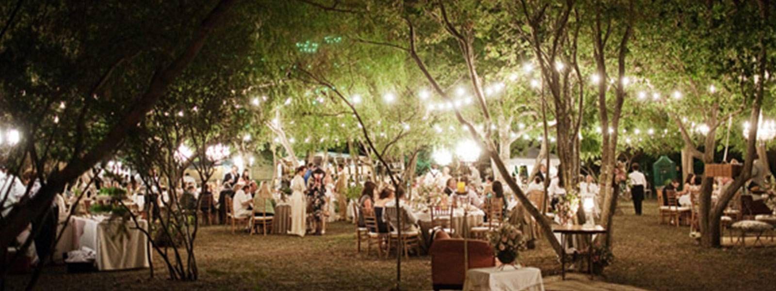 Outdoor-Party-Lighting.jpg 1,600×601 pixels   Harriet's Board for ...