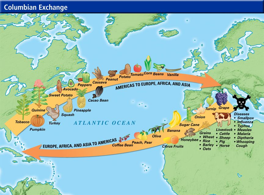 Columbian Exchange  how economics and trade shaped the new world - new world map of africa