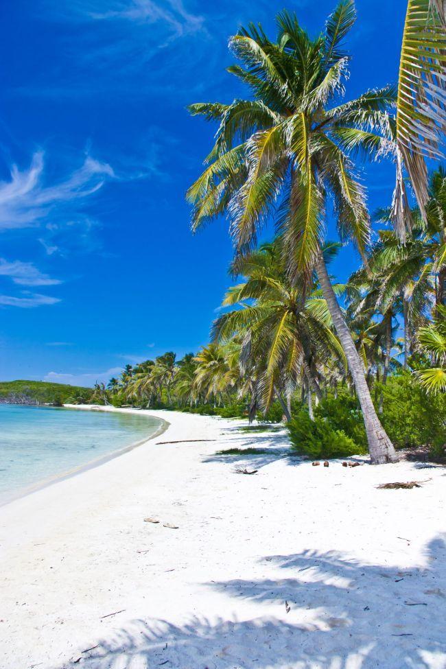 The Super Rich and Hawaii: A love affair... TEL(808) 852-8833 DaveDickey.net (RS) Century 21 All Islands #Waikiki #Hawaii #Kakaako