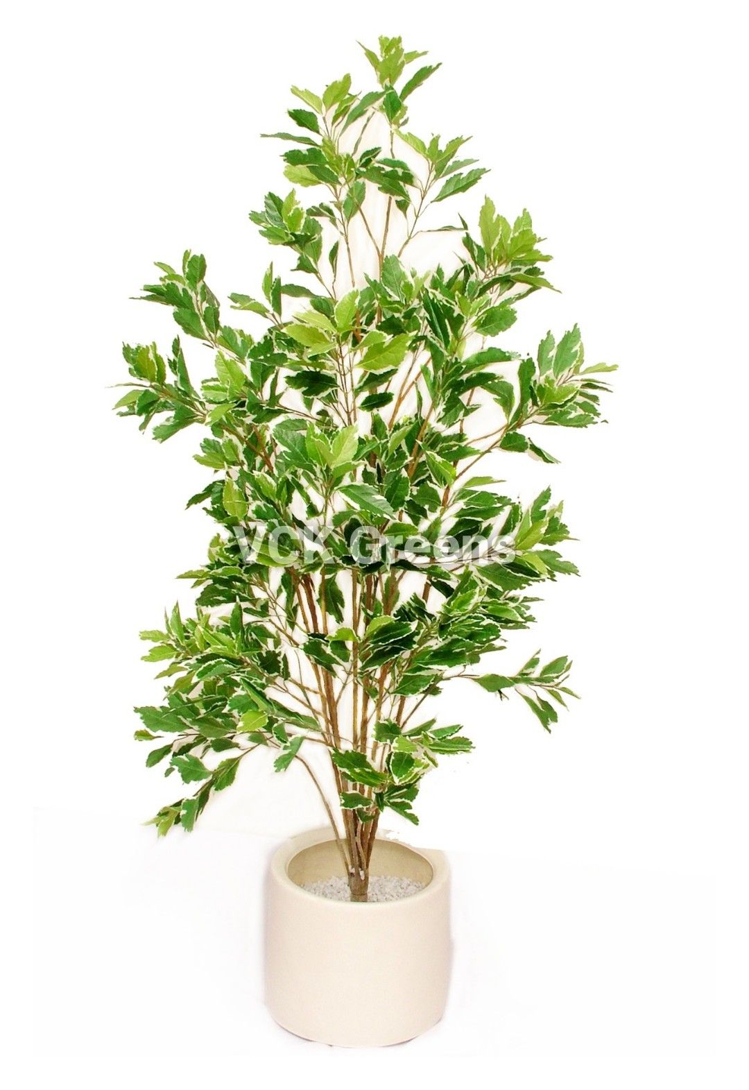 Artificial Hide Green Leaves Plants for home and offices. Product Height - 150cm (5Feet), Product comes without pot. Product Code - #VCKAP2025. #artificialplants #fakeplants