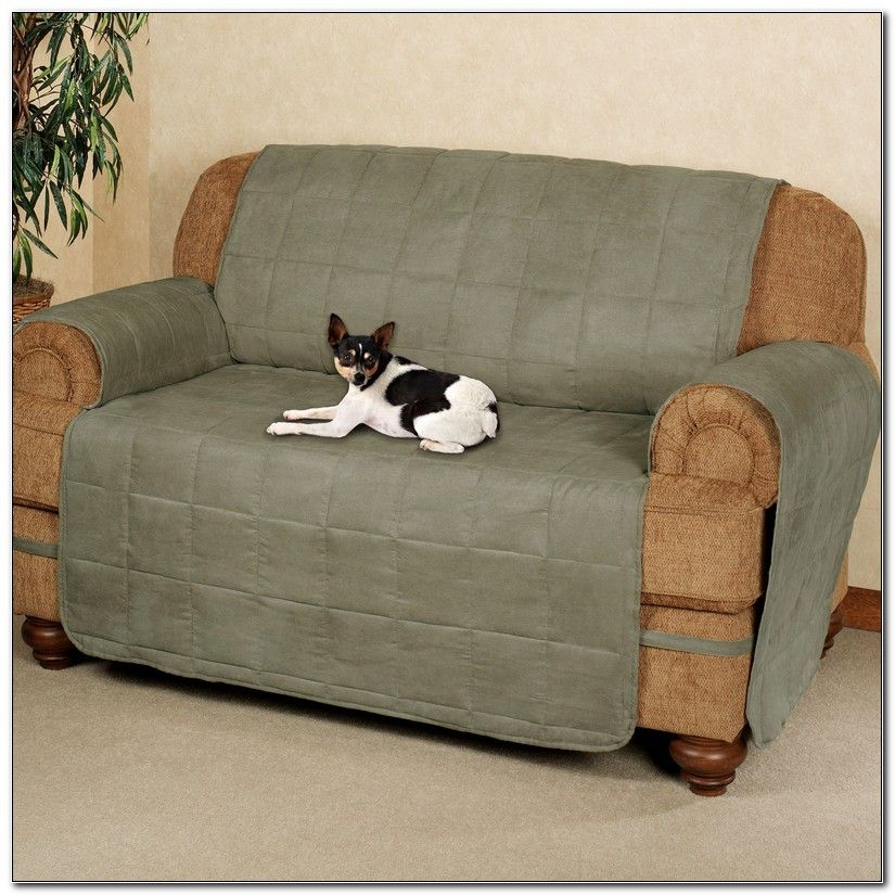 Pet Sofa Covers With Straps Pet sofa cover, Sofa covers