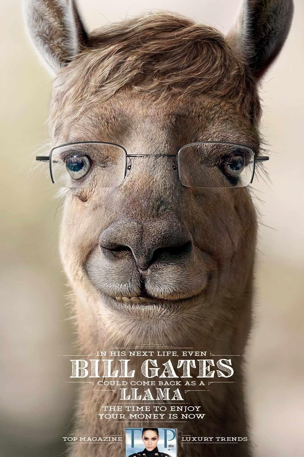 Top Magazine Reimagines Ceos As Animals Business Insider Bbdo Funny Ads Bill Gates