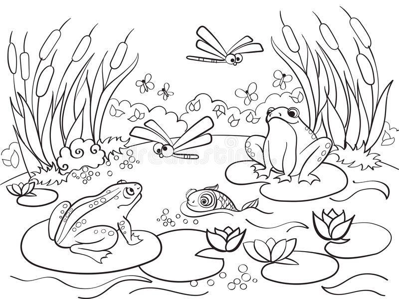 Image Result For Botanical Illustrations Wetlands Paginas Para Colorear De Animales Paginas Para Colorear Arte Colorido