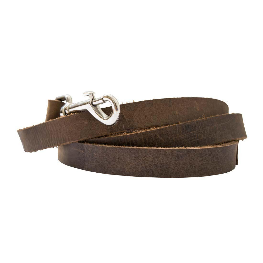 Rustic Leather Dog Leash (6 feet)