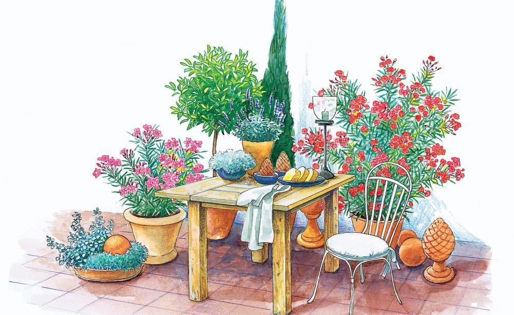 Terrasse Und Sitzplatz Mediterran Gestalten