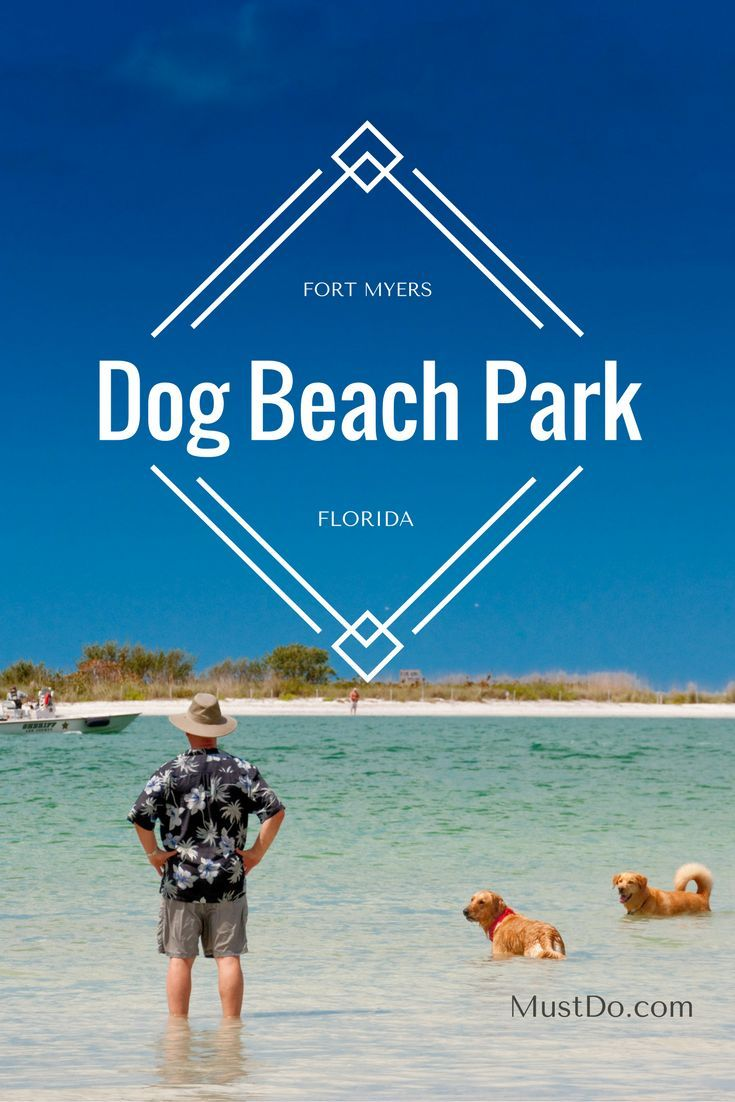 Dog Island Florida Map.Dog Beach Park Directions Information Map Hours Ft Myers