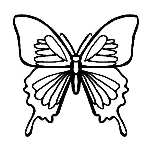 Butterfly Coloring Sheets Free Printables | Lucho\'s MOM | Pinterest