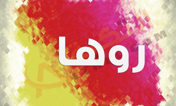 معنى اسم روها في القاموس العربي اسم روها مؤنث جديد على السمع فهو من الأسماء الحديثة للبنات فإن العائلات يرغبون في اختيار اسم للبنت Neon Signs Arab Love Logos