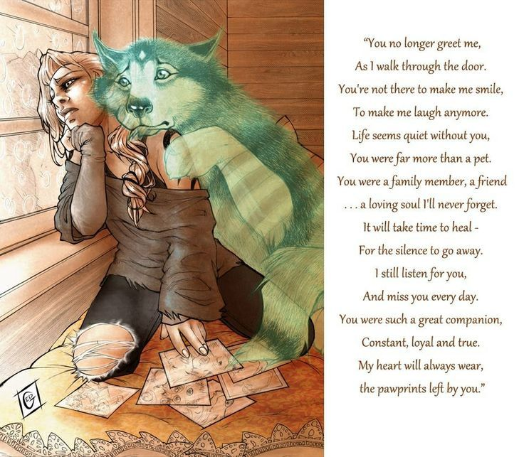You were never a Pet... Always and Forever my Prec... - #jupe #Pet #Prec
