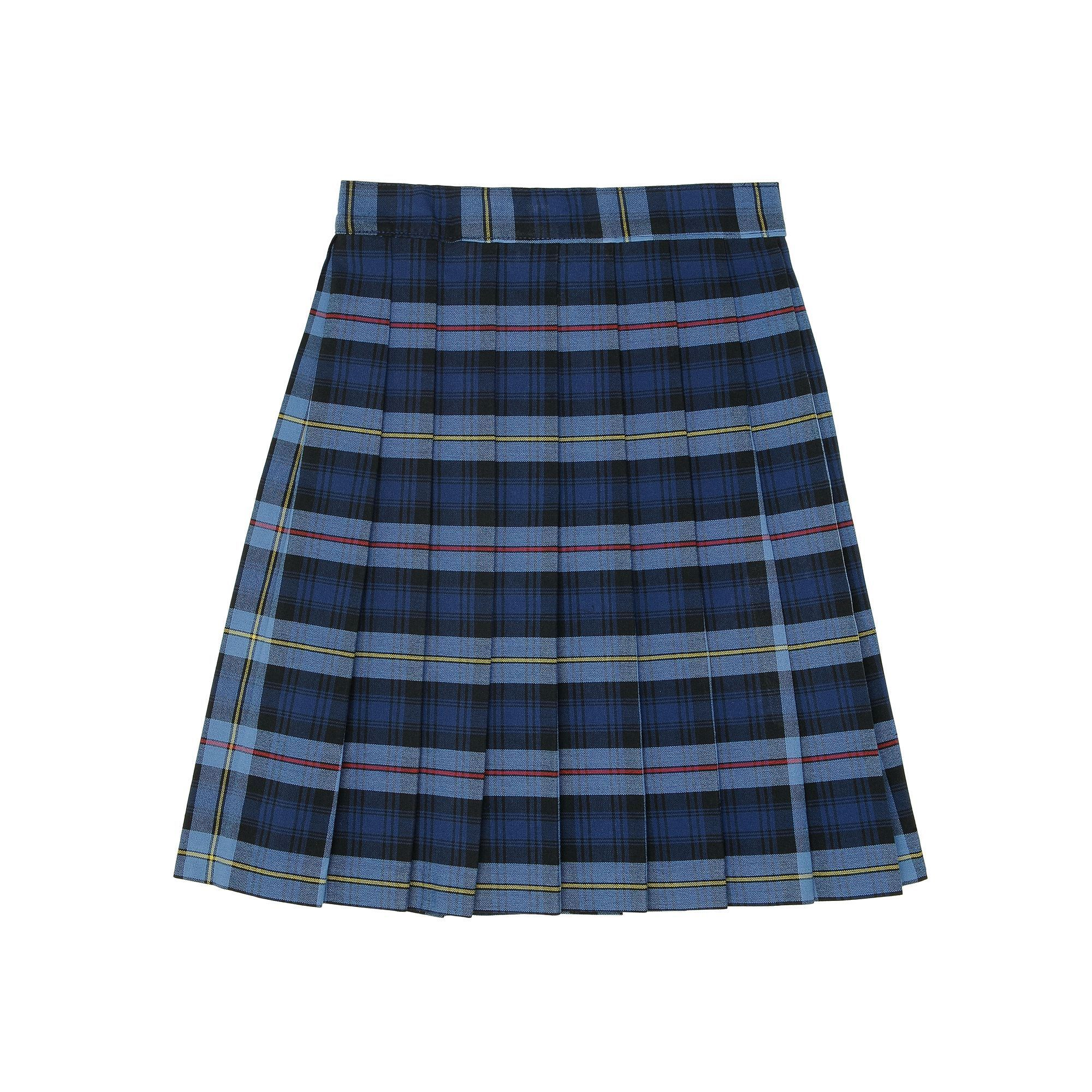 32d929dbc Plus Size Blue Plaid Skirt