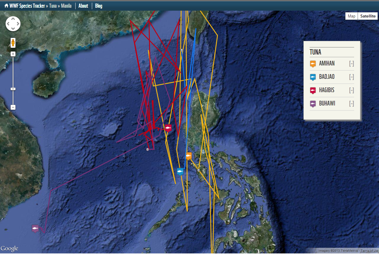 Clickable Google Map: WWF Tuna Tracking in Philippines | Custom ...