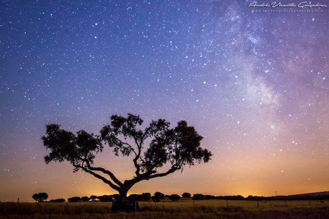 Звездное небо в заповеднике Alqueva