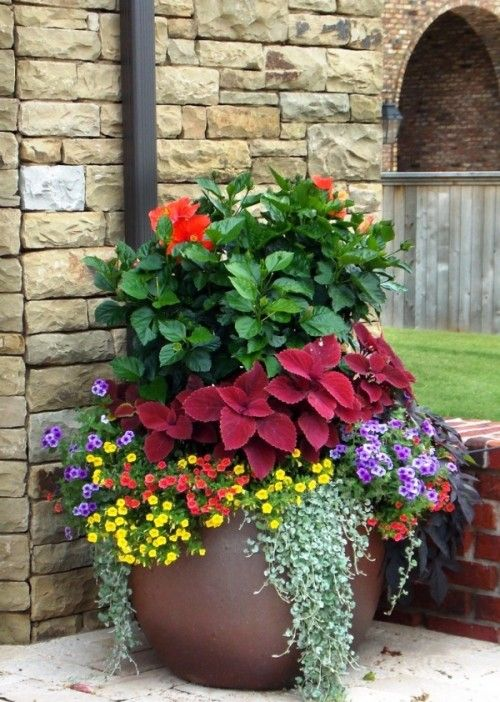 Brilliant Ideas For Displaying Plants In Outdoor Vases