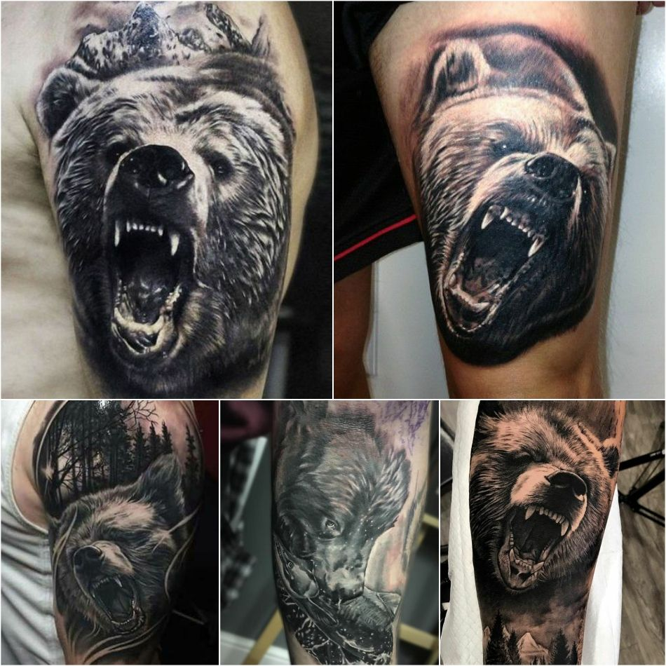 Картинки по запросу эскиз медведь реализм | Дизайн ...