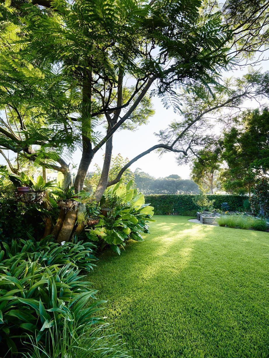 A Lush Entertainers Garden In Sydneys Inner West In 2020 Entertaining Garden Urban Garden Australian Garden
