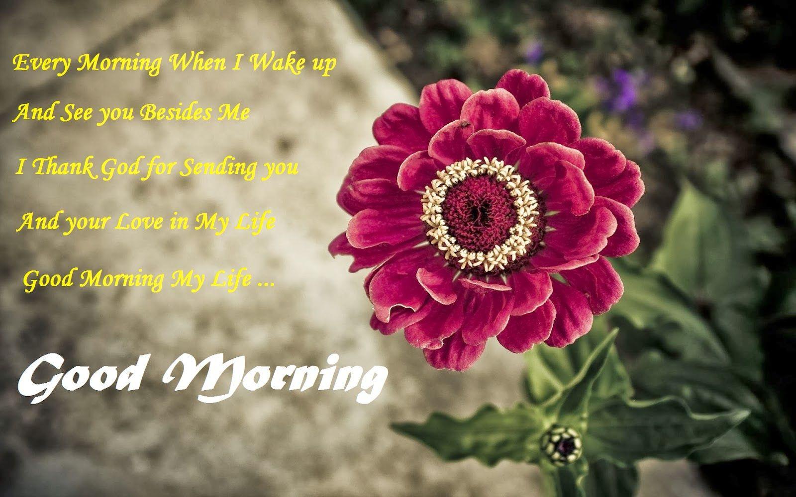 Good morning world best images - taryn terrell wallpaper steamer