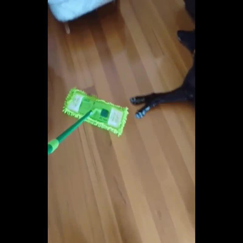 Cleantip Sweep First Then Vacuum