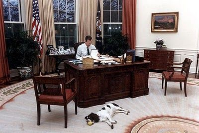 bush oval office. Having A Ball: President George Bush And His Dog Millie In The Oval Office At White House