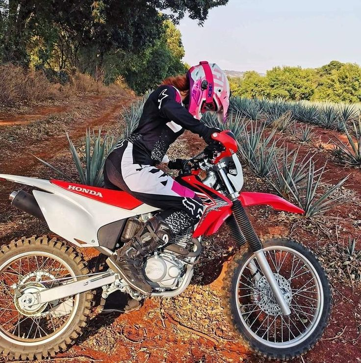 Dirtbikes Bikes Offroad And Motocross