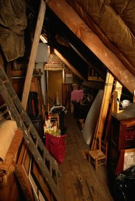 How To Get Rid Of White Mold In Attic