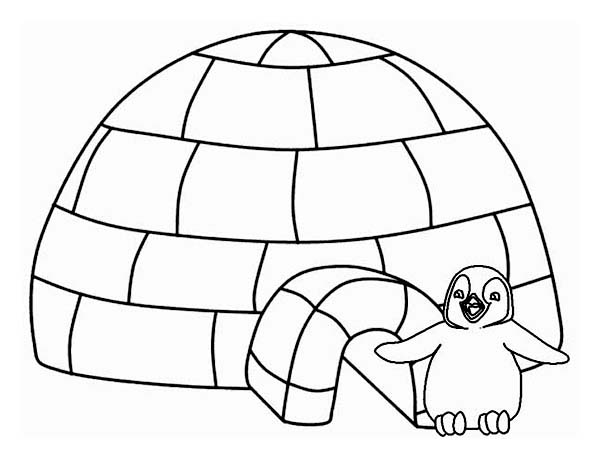 Lovely Penguin And His Iglo On Winter Season Coloring Page Netart In 2020 Penguin Coloring Pages Penguin Coloring Coloring Pages Winter