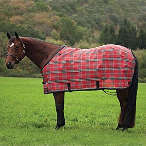 Cool Horse Blanket Blankets