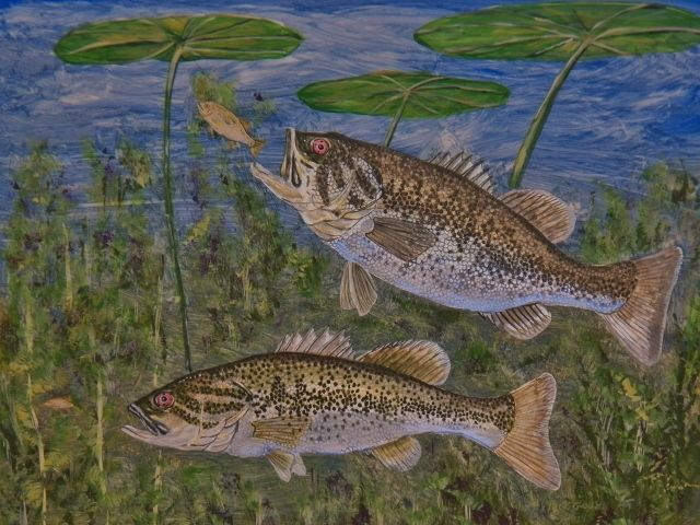 16 by 20 inch Acrylic Gouache on Claybord of Largemouth Bass