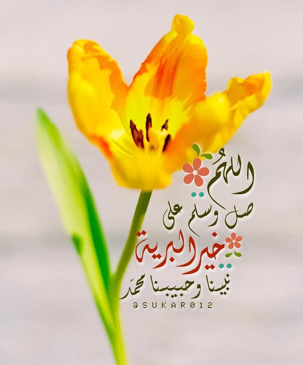 أحاديث نبوية عن شهر رمضان المبارك Posts Facebook