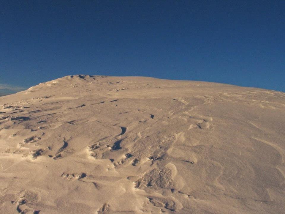 Vrh Grintovca 2558 m; foto: igr