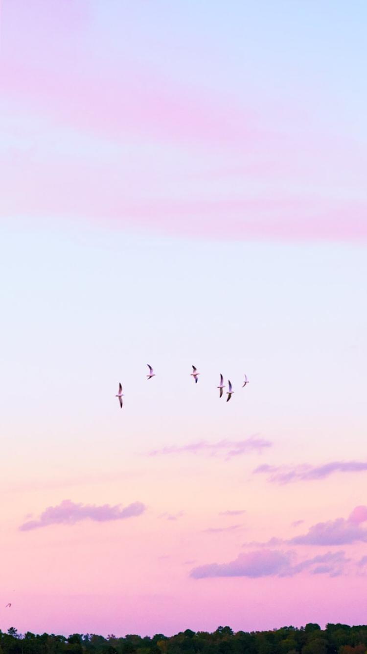 Matt Crump Photography Pastel Iphone Wallpaper Pastel Iphone