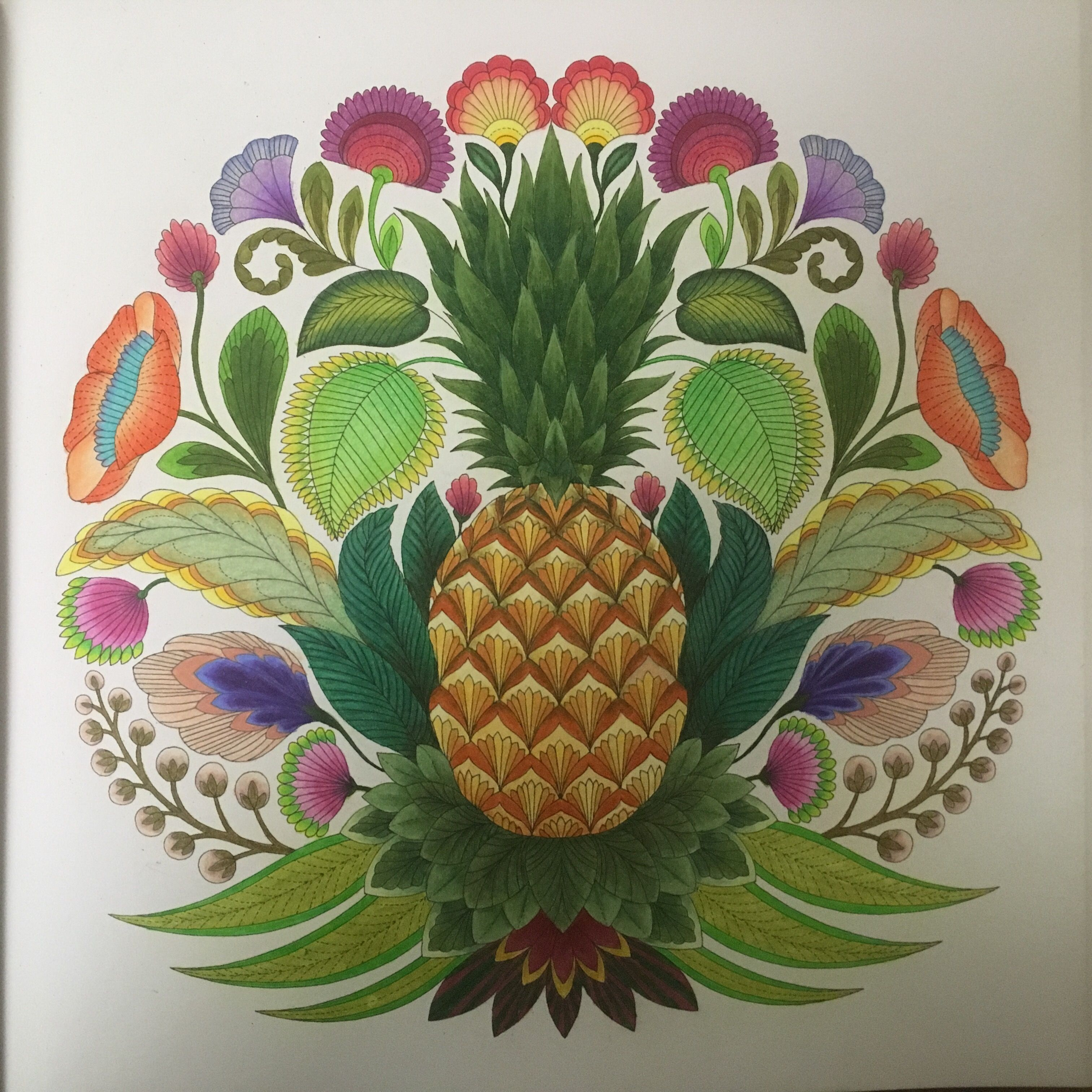 Millie Marottas Tropical Wonderland Pineapple