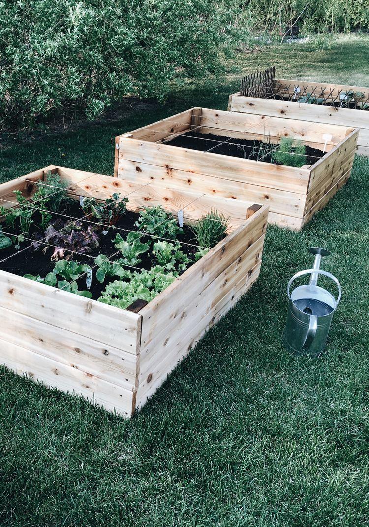 Fabriquer Potager Carré En Bois le potager en carrés (square foot garden) | comment faire un