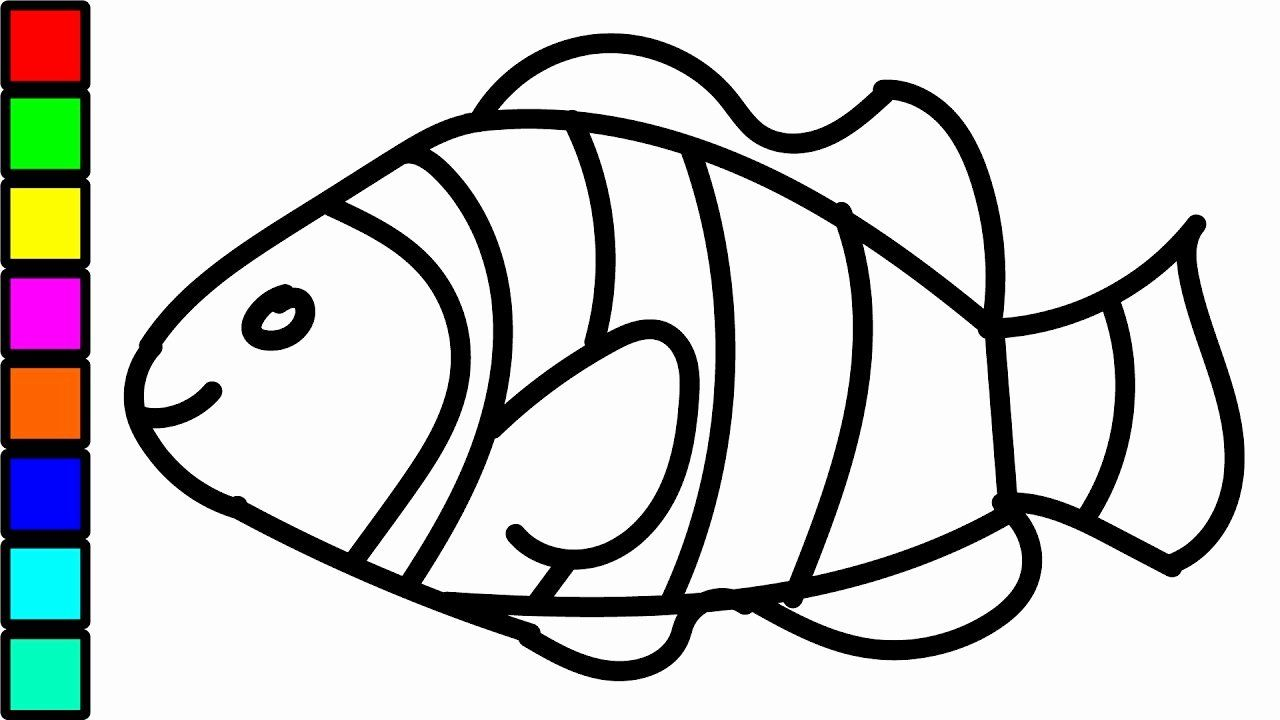 28 Clown Fish Coloring Page In 2020 Fish Coloring Page Birthday