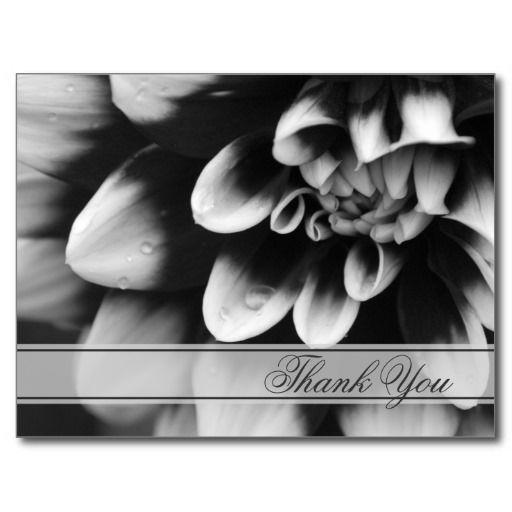 Black and White Dahlia Thank You Postcard